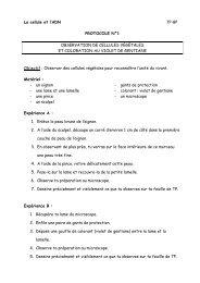 Protocoles - BiOutils