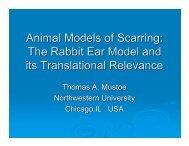 Thomas Mustoe, MD, Northwestern University Medical Faculty ...