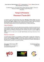Conferenze Piacenza 2011 - Provincia solidale