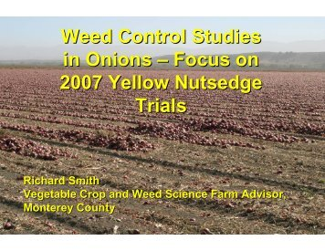 Weed Control Studies in Onions – Focus on 2007 ... - Monterey County
