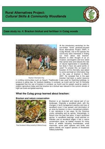 Case study no. 4: Bracken - Reforesting Scotland