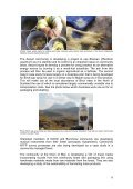 Rural Alternatives Project Mid-Term Report - Reforesting Scotland - Page 6