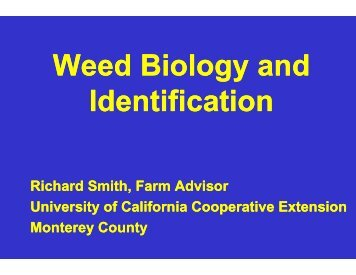 Weed Identification March 13, 2008 - Monterey County