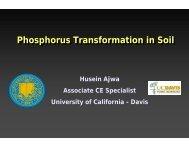 Phosphorus Transformation in Soil Phosphorus Transformation in Soil