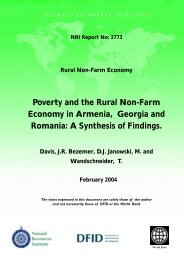 The Rural Non-Farm Economy and - Natural Resources Institute