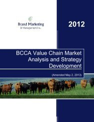 BCCA Value Chain Market Analysis and Strategy Development