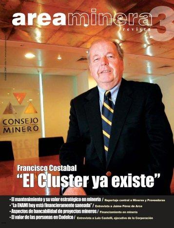 ´El Cluster ya existeµ - Areaminera