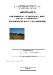 la dynamique des paysages et les facteurs physiques - Thèses ...