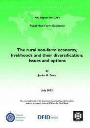 The rural non-farm economy, livelihoods and their diversification ...
