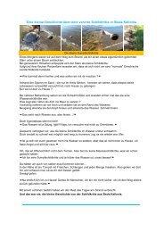 Eine kleine Geschichte über eine verirrte Schildkröte in Skala Kallonis