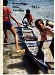 1989.12 Molukken + Bali + Lombok - vogtmich.de