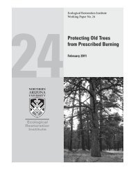Protecting Old Trees from Prescribed Burning - Southwest Fire ...