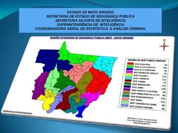 1º semestre 2013 do Estado - Segurança Pública