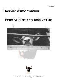 argumentaire 1000 veaux
