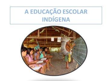 2_Ciclo_Educacao indigena.pdf - Departamento de Geografia - UFMT