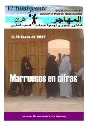 N.40 Enero de 2007 - Itran