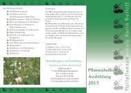 Pflanzenheilkunde-Ausbildung als PDF - Heilpflanzenschule Karin ...