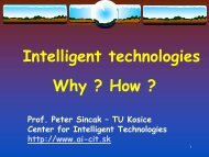 Prof. Dr. Peter Šinčák - Information technologies