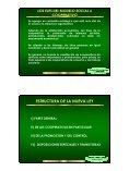 Ley General de Cooperativas - Cooperativas Agrarias Federadas - Page 3