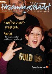 Församlingsbladet 2013-02-15 - Mild Media