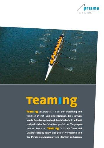 Teaming Infoblatt - Prisma Gesellschaft für Projektmanagement und