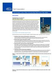Pall Activated Carbon Filters Incorporating Seitz® AKS Filter Media