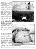 The Colchester Archaeologist 1991-2 - Colchester Archaeological ... - Page 5