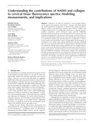 Understanding the contributions of NADH and ... - Urs Utzinger