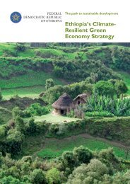 Ethiopia's Climate- Resilient Green Economy Strategy