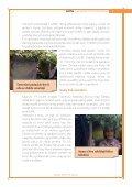 WoW_magazín YoYo ostrava - Page 5