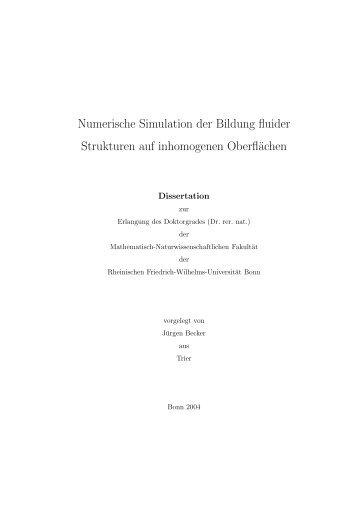 Numerische Simulation der Bildung fluider Strukturen auf ...