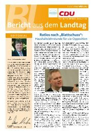 Bericht aus dem Landtag - Dezember 2010