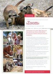 Zoom« - Kinder-Gastroenterologie-Essen