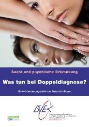Was tun bei Doppeldiagnose - BVEK