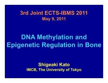 DNA Methylation and Epigenetic Regulation in Bone