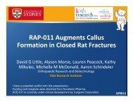 RAP-011 Augments Callus Formation in Closed Rat Fractures