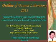 Strategy - Research Laboratory for Nuclear Reactors