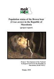 Population status of the Brown bear (Ursus arctos) in the ... - ECNC