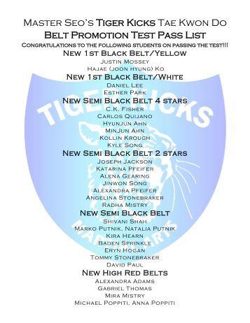 Black color belt taekwondo essays regarding all the great