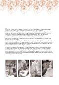 Premiate Ceramiche Artistiche - Page 2