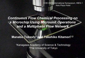 Continuous Flow Chemical Processing on a Microchip Using ...