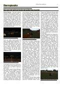 23. Ausgabe - Oase der Vier Palmen - Seite 6