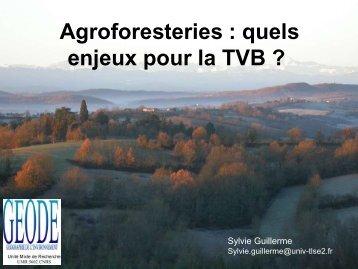 Agroforesteries : quels enjeux pour la TVB