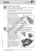 """Gestaltungstechnik Collage """"Blätter im Wind"""" - Seite 5"""