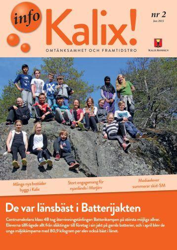 InfoKalix nr 2 2015