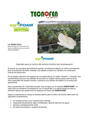 Sustrato para el cultivo de Anturio (Anthurium Andreanum) - peatfoam