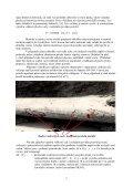 Použití automaticky řízených saturáží k účinné ochraně proti ... - Page 2