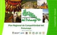 presentacion plan regional de competitividad - Cámara de ...