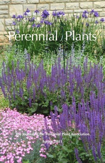 Perennial Plants - Cypripedium.de