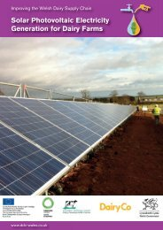 Solar Photovoltaic Electricity Generation for Dairy Farms